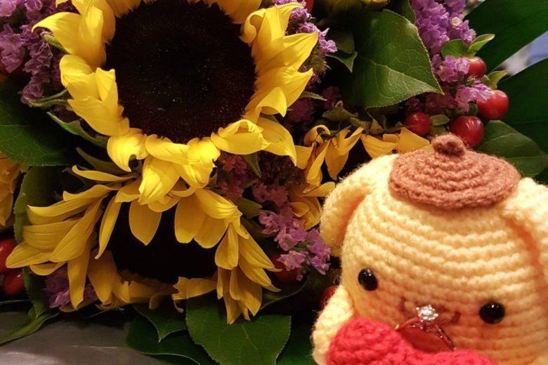 Tiny Rabbit Hole - Pompompurin: A proposal surprise!